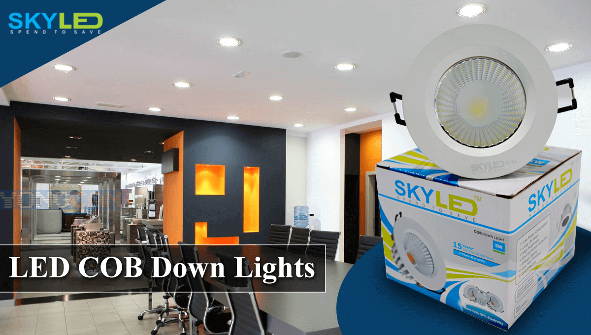 skyled downlight