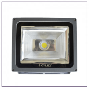 30W Flood Light